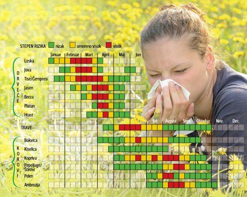 35573_alergije1